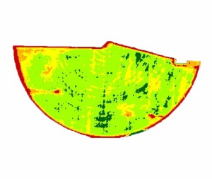 Satellite NDVI image showing five zones used for VRGR.