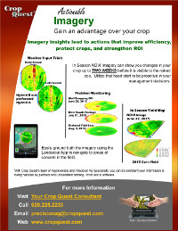 Imagery PDF Flyer Download