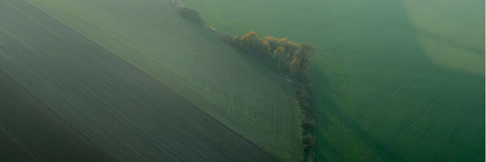 Precision Agriculture – Keeping It Simple