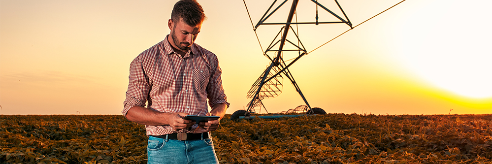 Remote Farm Consulting on Pivot Irrigation