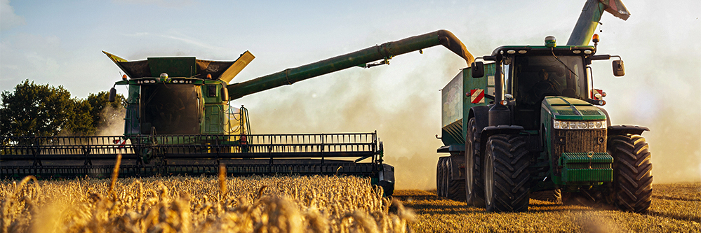 double crop after wheat harvest